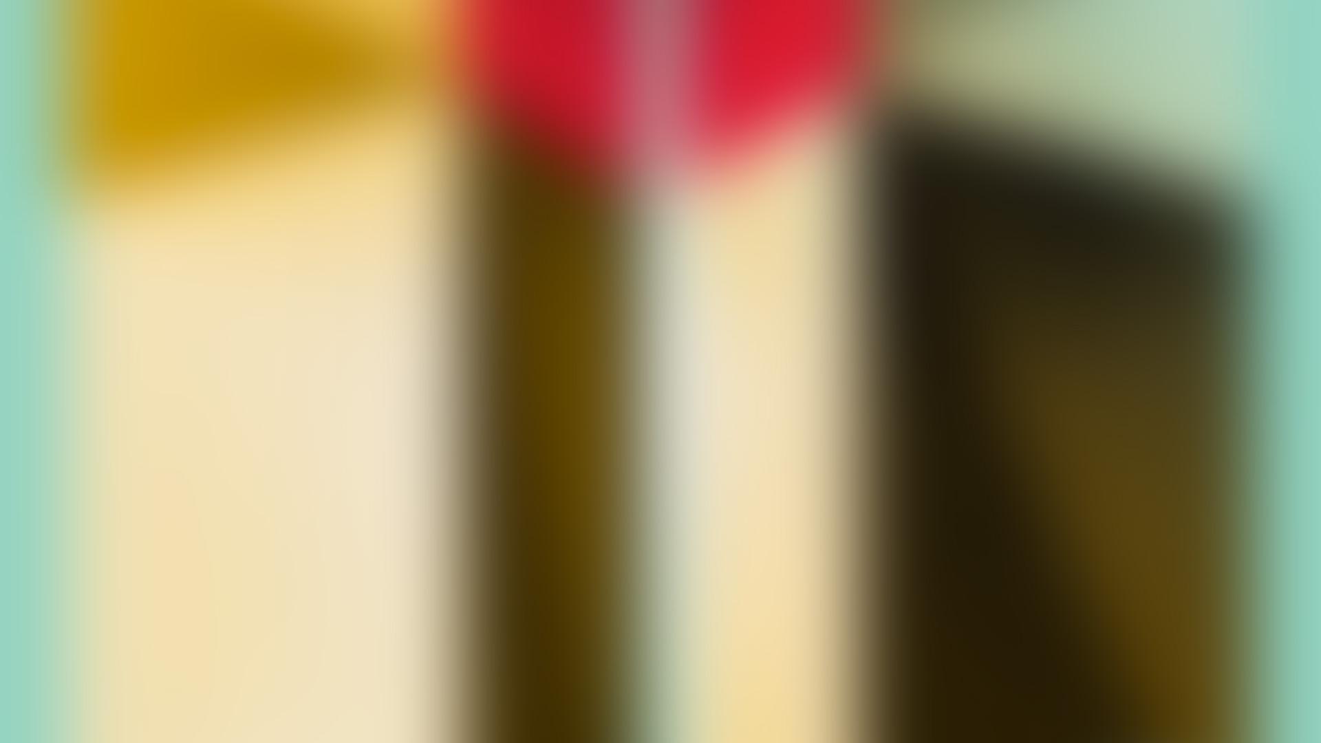 Mobilee203_SIS_Danzan_bg-blur