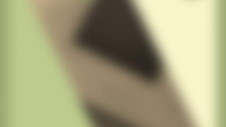 Mobilee208_Citizenn_NeverFeelTheSame_bg-blur